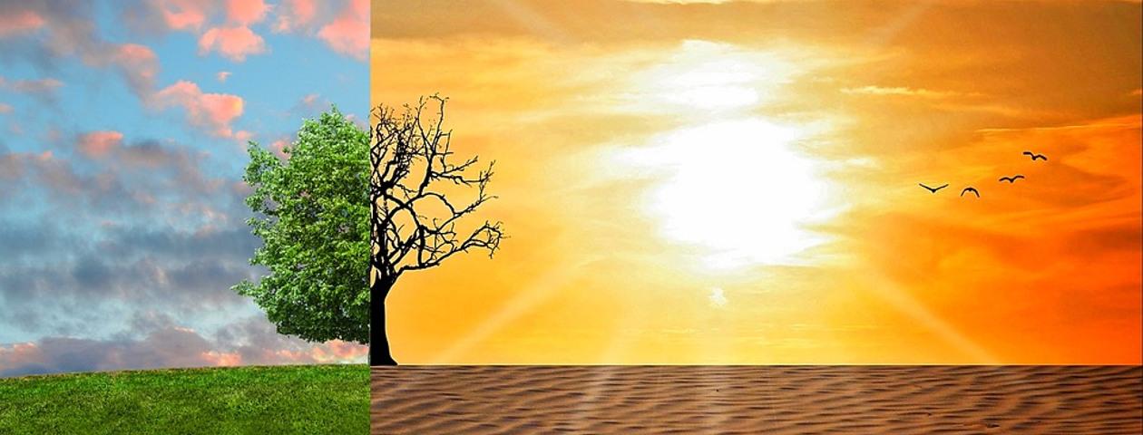 ZUKUNKFTSWERKSTATT – Ideen für mehr Klimaschutz
